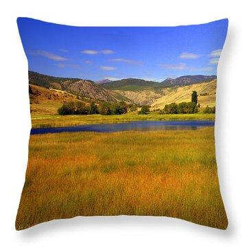 Washington Landscape Throw Pillow by Marty Koch