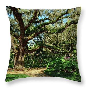 Washington Oaks Gardens Throw Pillow