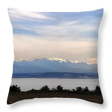 Washington Panorama Throw Pillow