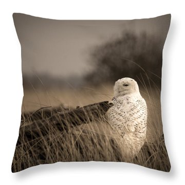 Throw Pillow featuring the photograph Watch Owl by Erin Kohlenberg
