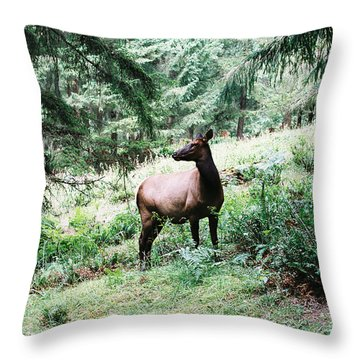 Watchful Mother Throw Pillow