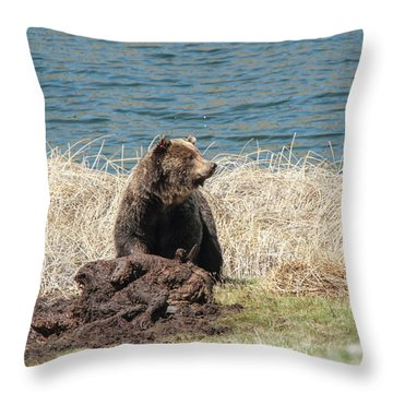 Watchful Predator Throw Pillow