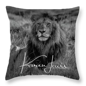 Throw Pillow featuring the photograph Watching And Waiting by Karen Lewis