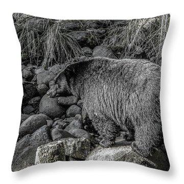 Watching Black Bear Throw Pillow