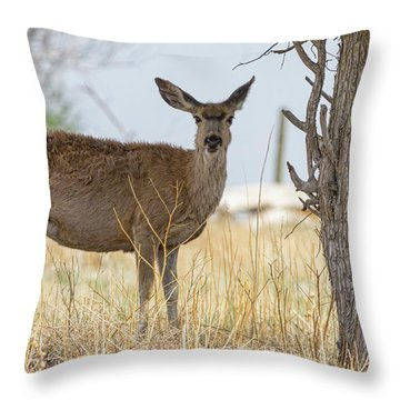 Watching From The Woods Throw Pillow by James BO Insogna