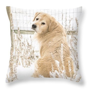 Watching It Snow Throw Pillow