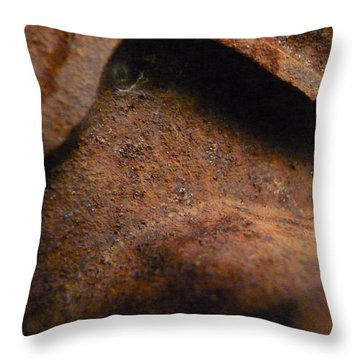 Throw Pillow featuring the photograph Watching by Lin Haring