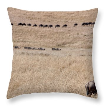 Watching The Herd Throw Pillow