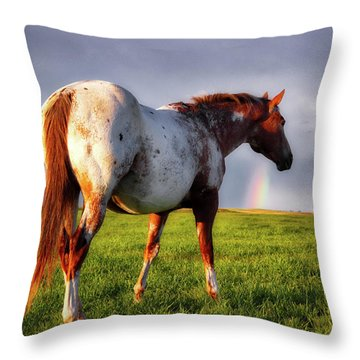 Watching The Rainbow Throw Pillow