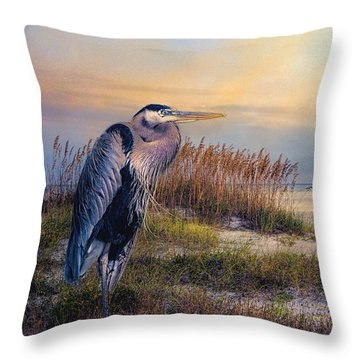 Watching The Sun Go Down Throw Pillow by Brian Tarr