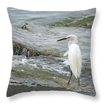 Watching The Tide Come In Throw Pillow