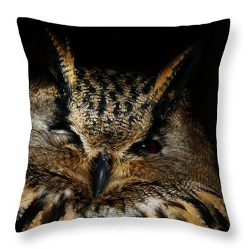 Watching You Throw Pillow by Bernd Hau