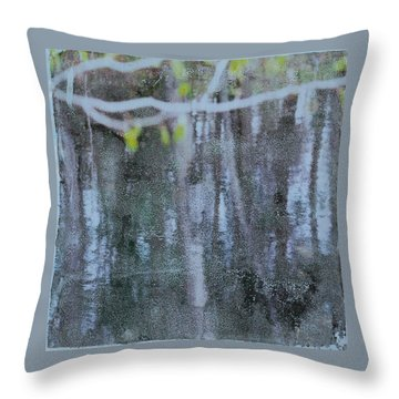Water #11 Throw Pillow