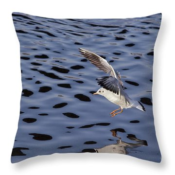 Water Alighting Throw Pillow by Michal Boubin