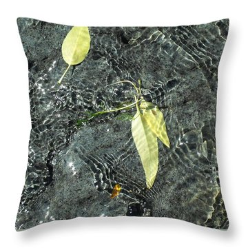 Water And Leaves Throw Pillow