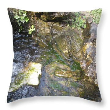 Water And Stones Throw Pillow by Anamarija Marinovic