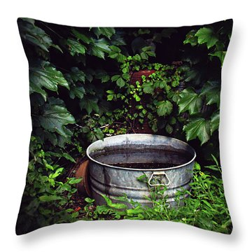 Throw Pillow featuring the photograph Water Bearer by Jessica Brawley