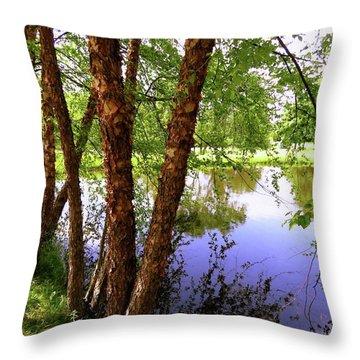Water Birch Throw Pillow