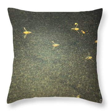 Water Boatmen Throw Pillow