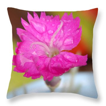 Water Bug Flower Throw Pillow by Samantha Thome