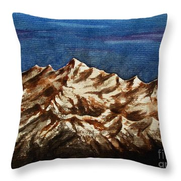 Water Color-6 Throw Pillow