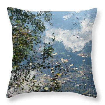 Water Color Throw Pillow by Misha Bean