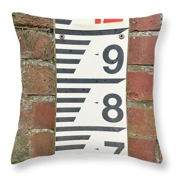 Water Depth Measurer Throw Pillow