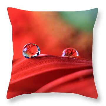Water Drop Reflections Throw Pillow