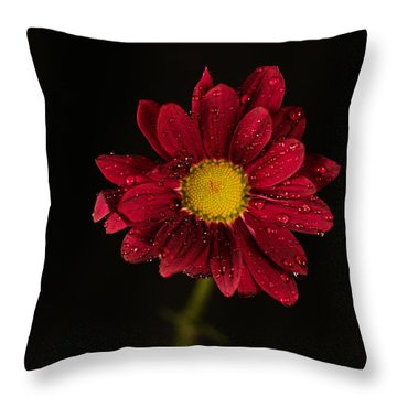 Throw Pillow featuring the photograph Water Drops On A Flower by Jeff Swan