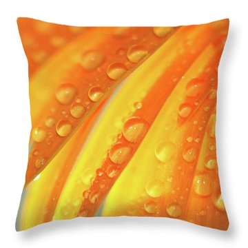 Water Drops On Daisy Petals Throw Pillow by Daphne Sampson
