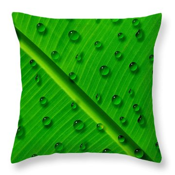 Throw Pillow featuring the painting Water Drops On Palm Leaf by Georgeta Blanaru