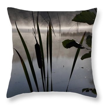 Water Fairies Throw Pillow by David and Lynn Keller