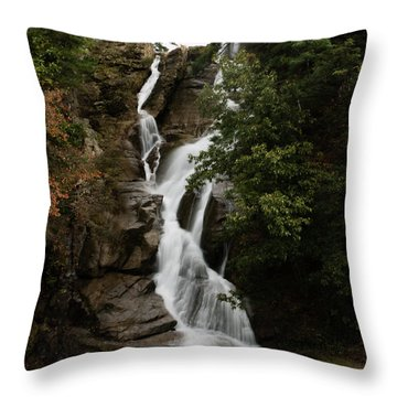 Water Fall 3 Throw Pillow