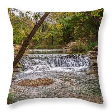 Water Fall Throw Pillow by Doug Long