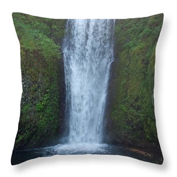 Water Fall Throw Pillow by Shari Nees