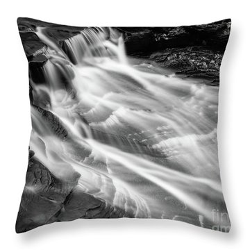 Water Falls Throw Pillow