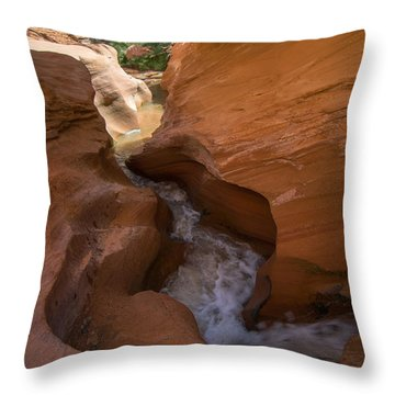Water Feature Coyote Gulch Throw Pillow by Michael J Bauer