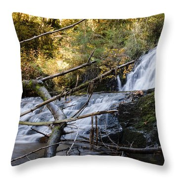 Water Finds A Way Throw Pillow