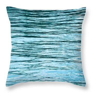 Water Flow Throw Pillow by Steve Gadomski