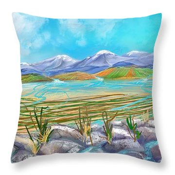 Water For Irrigation  Throw Pillow