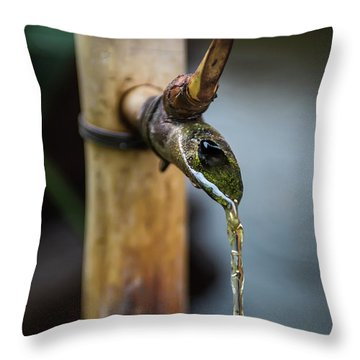 Water Fountain Throw Pillow by Endre Balogh