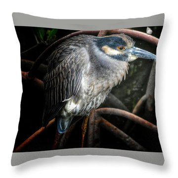 Water Fowl Iv Throw Pillow