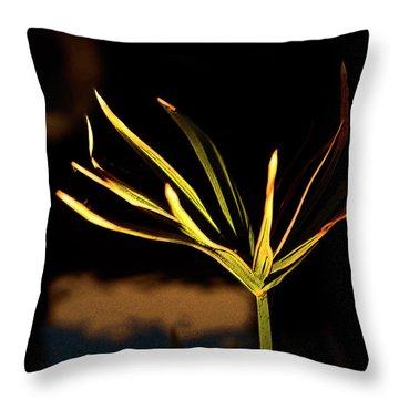 Water Grass Throw Pillow