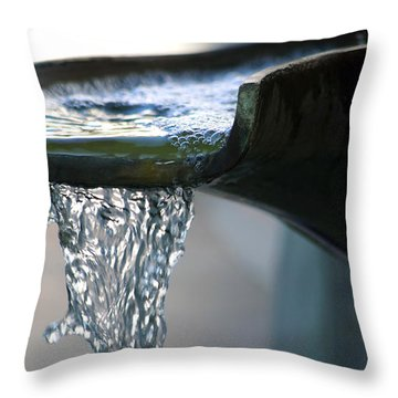 Water In A Fountain Bowl Throw Pillow