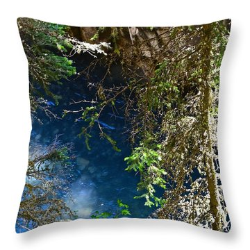 Water In The Sky Throw Pillow