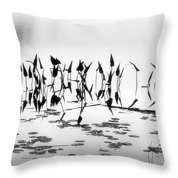 Water Lilies Throw Pillow by Catherine Alfidi