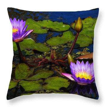 Water Lilies Iv Throw Pillow