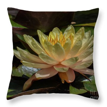 Water Lilly 1 Throw Pillow