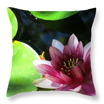 Water Lilly Throw Pillow by Betty Buller Whitehead
