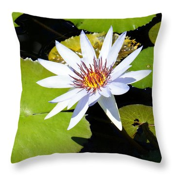 Water Lily 10 Throw Pillow